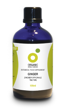 Ginger Tincture | Organic Zingiber Officianale Root Extract